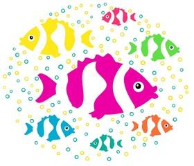 multicoloured fish