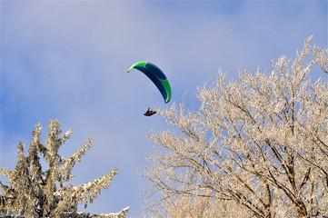 Paragleiter im Winter über den Baumkronen