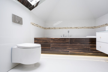 Luxury elegant washroom interior