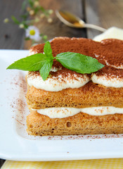 Traditional Italian dessert tiramisu with cocoa and mint leaf