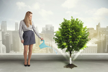 Businesswoman watering green tree on city background