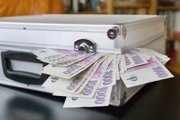 Czech money - banknotes in a case