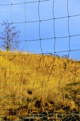 fencing, mesh, grid, reducing, space, barrier, nature, outdoor,