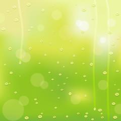 Springtime, raindrops