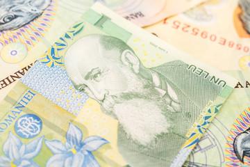 Romanian Lei Banknotes Close Up