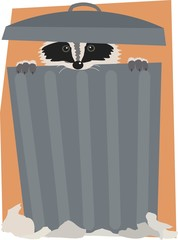 Trash can raccoon.