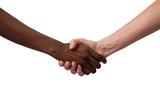 Lotta al razzismo