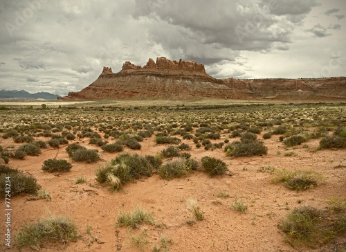 Landscape of beautiful desert nature in Utah