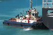 Tugboat assistance - 77244619