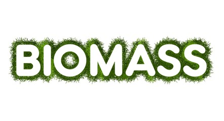 Biomass title with grass arround