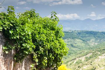 Nature of Lazio