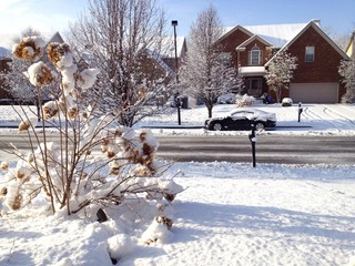 Snow on an american city street