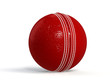 canvas print picture - red cricket ball