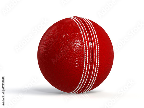 canvas print picture red cricket ball