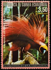 Postage stamp Equatorial Guinea showing a bird of paradise