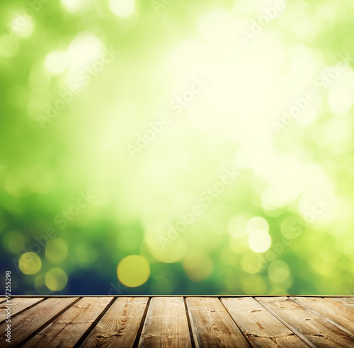 wooden surface and sunny forest
