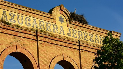 Storks on old abandoned building, Jerez de la Frontera, Spain