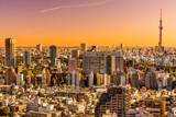Fototapeta Tokyo skyline,  Japan.