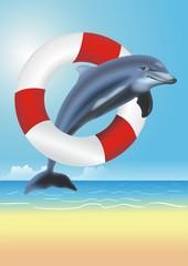 Lifesaving Dolphin Illustration