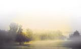 Fototapety Monochrome landscape