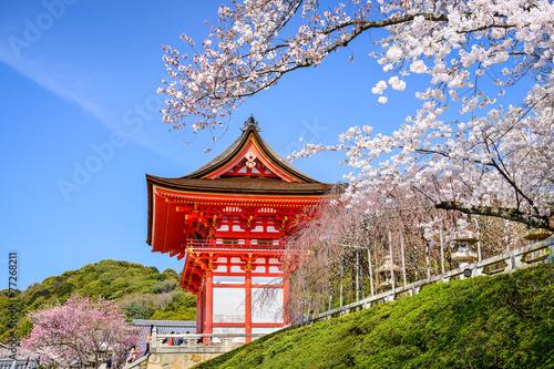 Foto op Plexiglas Japan Kyoto Temples in the Spring