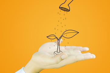 hand with tree decrease global warming