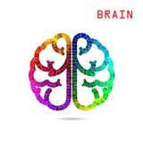 Creative colorful left brain and right brain Idea concept backgr