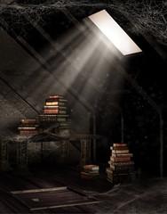 Stary strych z książkami i pajęczynami