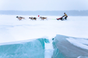 crack in the ice on a clean background dog sledding. Shallow dep