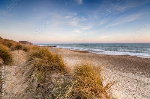 Sand Dunes at hengistbury Head - 77285836