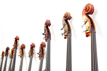 row of double basses details against a wall