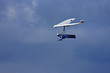 Hang Glider - 77290670