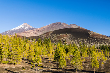 View on ridge of Teide, Pico Viejo volcanoes and Samara mountain