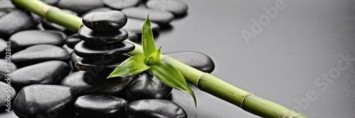 zen stones - 77302883