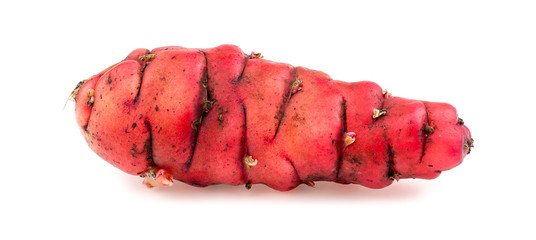 Whole pink oca isolated on white