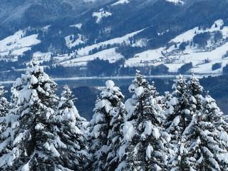 Panorama suisse