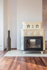 Designer stove in living room