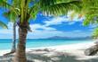 tropics beach, sand, palm trees.