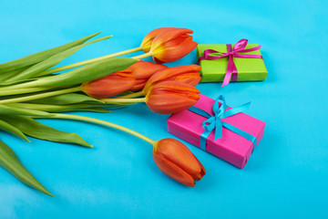 Flowers red tulips on blue sky background