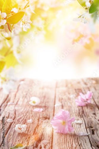 Fotobehang Lente Spring blossoms background