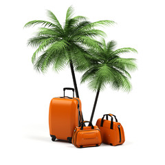 Suitcases with palm tree isolated on white background