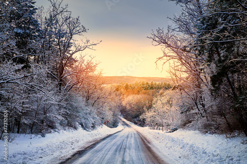 Foto op Canvas Bossen Winter road in forest