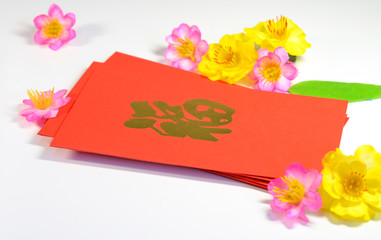 lunar new year money in envelopes gift