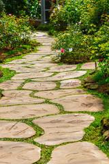 foot path in garden