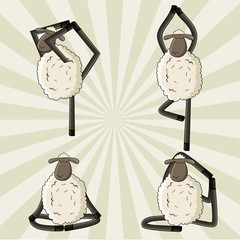 Yoga sheep standing in different poses.