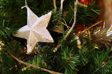 A silver star on the Christmas tree.