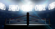 Boxing Ring In Arena - 77353614