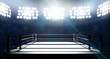Boxing Ring In Arena - 77353688