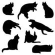 猫のシルエット セット