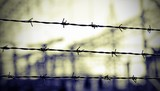 lines of barbed wire to demarcate the border during the war